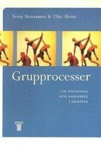 Grupprocesser : Om inlärning och samarbete i grupper