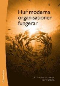 Hur moderna organisationer fungerar