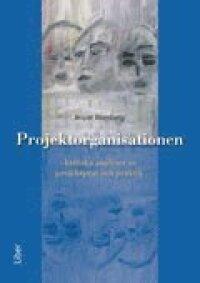 Projektorganisationen - Kritiska analyser av projektprat och praktik
