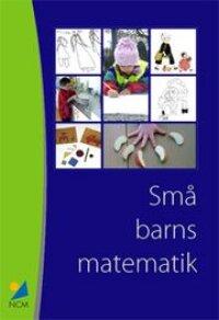 Små barns matematik : Erfarenheter från ett pilotprojekt med barn 1 - 5 år och deras lärare