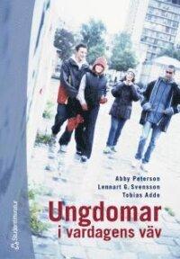 Ungdomar i vardagens väv - En sociologisk studie av ungdomars gruppbildande i en storstadsförort